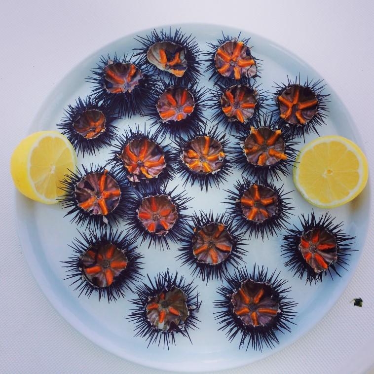 Προσοχή: Το φαγητό στη Χίο δεν είναι παντού καλό. Τα σωστά, τα ψαγμένα τα tips μου, βγαλμένα μετά από χρόνια δοκιμών (και περιττών θερμίδων) θα σε στείλουν απευθείας στην πηγή της γεύσης!