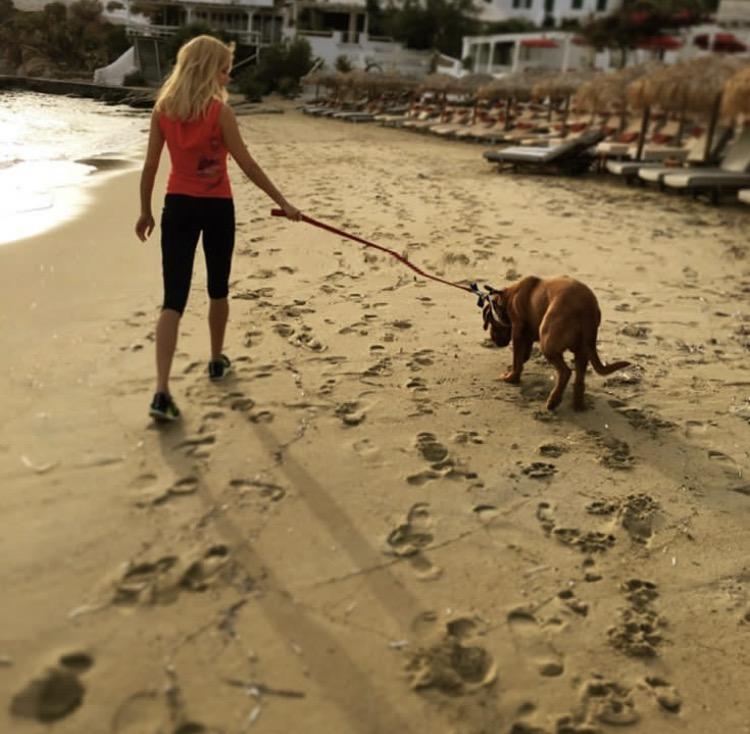 Δεν θα ξεχάσω ποτέ: να πάω το πρωί ή το απόγευμα για περπάτημα στην παραλία με τον Χουτς!