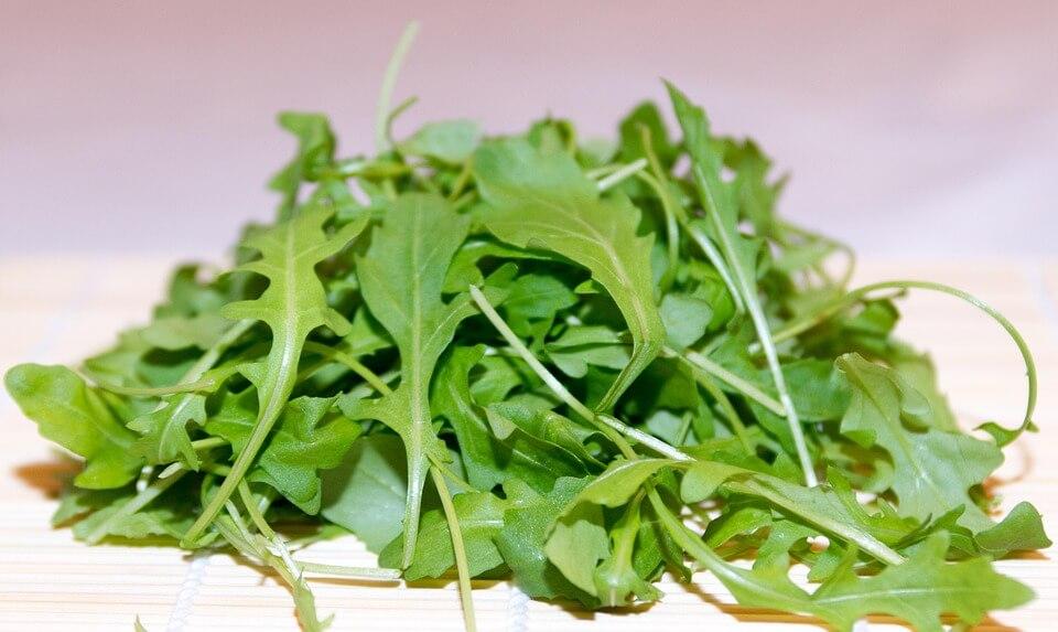 Συγκομίζουμε τα φύλλα της ρόκας όταν έχουν φτάσει σε ικανοποιητικό μέγεθος και είναι τρυφερά και τραγανά. Δεν ξεριζώνουμε τα φυτά της ρόκας κατά τη συγκομιδή, αλλά κόβουμε τα φύλλα από χαμηλά για να δώσουμε την ευκαιρία στο φυτό να ξαναφυτρώσει και να πραγματοποιήσουμε και άλλες συγκομιδές. Συνήθως, πραγματοποιούμε αρκετές κοπές μέχρι να αναπτύξει το φυτό της ρόκας το ανθοφόρο στέλεχος. Πάντως, ακόμη και αν αναπτύξουν το άνθος, μπορούμε να το αφαιρέσουμε έγκαιρα και να πάρουμε άλλη μια συγκομιδή. Απλά, σε αυτήν την περίπτωση χάνουμε το σπόρο που θα δώσει νέα φυτά ρόκας την επόμενη καλλιεργητική περίοδο.