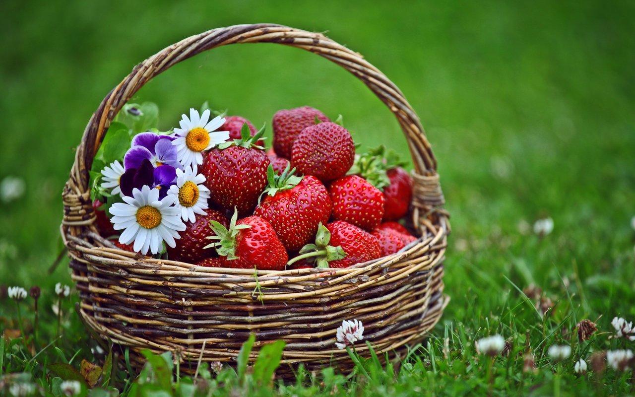Μυστικά για φράουλες: επιλογή-καθάρισμα-συντήρηση-featured_image