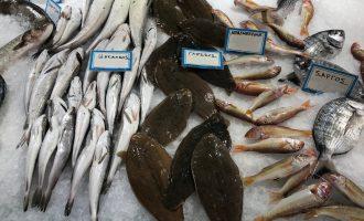 7 μυστικά για να διαλέγετε φρέσκα ψάρια-featured_image