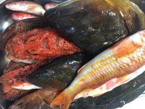 Τα φρέσκα ψάρια μοσχοβολάνε θάλασσα και ιώδιο. Ένα ψάρι μυρίζει έντονη μυρωδιά ψαριού όταν είναι ημερών.
