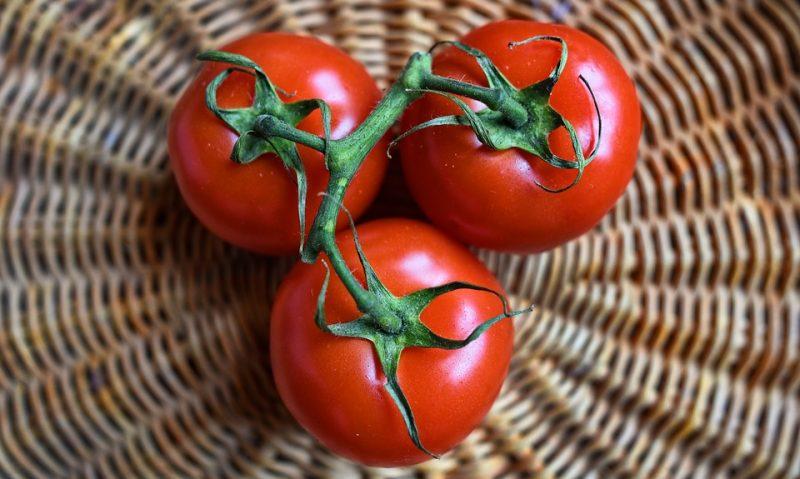 Ντομάτα, η βασίλισσα του καλοκαιριού-featured_image