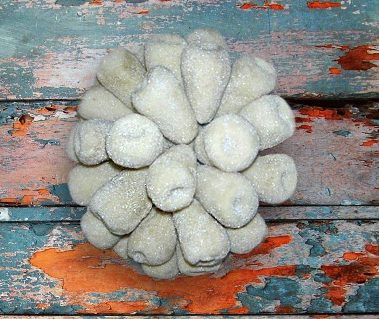 Άψητα αμυγδαλωτά Σίφνου (νηστίσιμα)