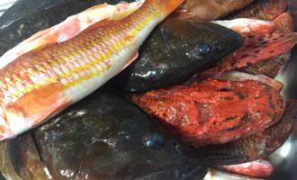 Ψάρια: ξεπάγωμα, συντήρηση στο ψυγείο και στην κατάψυξη-featured_image