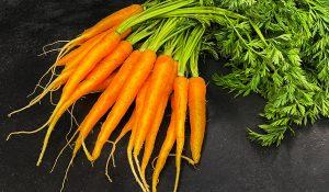 καροτο - καρότο